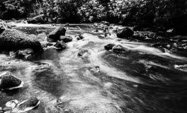 Πάρκο Aros Στοκ Φωτογραφίες