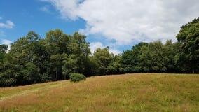 Πάρκο Colfield Sutton Στοκ Φωτογραφίες