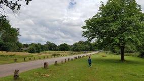 Πάρκο Colfield Sutton Στοκ Φωτογραφία