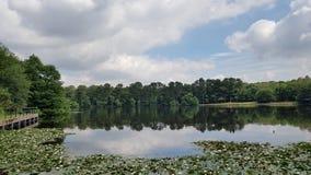 Πάρκο Colfield Sutton στοκ εικόνα