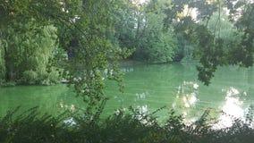 Πάρκο Foto στοκ φωτογραφία με δικαίωμα ελεύθερης χρήσης