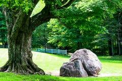 Πάρκο Gatineau Στοκ εικόνες με δικαίωμα ελεύθερης χρήσης