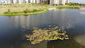 Πάρκο Hadera Ecko απόθεμα βίντεο