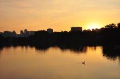 Πάρκο Ibirapuera στοκ φωτογραφία