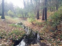 Πάρκο Irvine στοκ φωτογραφία με δικαίωμα ελεύθερης χρήσης