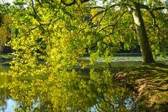 Πάρκο Jean-Ζακ Rousseau σε Ermenonville Στοκ Φωτογραφίες