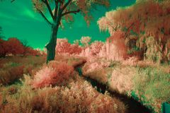 Πάρκο Lippold, λίμνη κρυστάλλου, Ιλλινόις Στοκ φωτογραφίες με δικαίωμα ελεύθερης χρήσης
