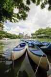 Πάρκο Lumphini Στοκ εικόνα με δικαίωμα ελεύθερης χρήσης