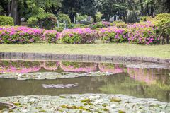 Πάρκο minato του Τσίμπα, στοκ εικόνες