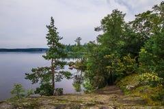 Πάρκο Monrepo φθινοπώρου σε Vyborg, περιοχή του Λένινγκραντ, της Ρωσίας στοκ εικόνα με δικαίωμα ελεύθερης χρήσης
