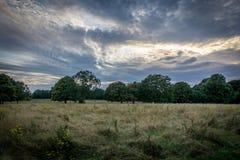 Πάρκο Nonsuch στοκ εικόνες με δικαίωμα ελεύθερης χρήσης