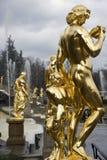 πάρκο peterhof βασιλικό Στοκ Εικόνα