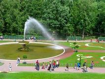 Πάρκο Peterhof, Ρωσία, πηγή Chasha, άνθρωποι Στοκ Εικόνες