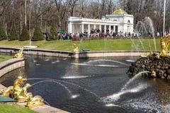 πάρκο peterhof στοκ φωτογραφίες