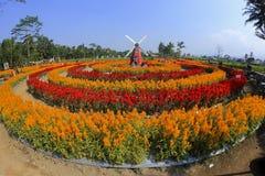 Πάρκο Ramandanu στοκ εικόνα με δικαίωμα ελεύθερης χρήσης