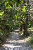 Πάρκο Repos Mon, πόλη της Κέρκυρας, Ελλάδα στοκ εικόνες