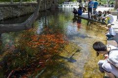 Πάρκο Shuimogou Στοκ Φωτογραφίες
