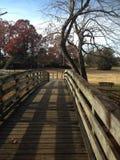 Πάρκο Sloan σε NC στοκ φωτογραφία με δικαίωμα ελεύθερης χρήσης