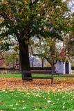 Πάρκο VyÅ ¡ ehrad, το φθινόπωρο, Πράγα, Δημοκρατία της Τσεχίας Στοκ φωτογραφία με δικαίωμα ελεύθερης χρήσης