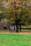 Πάρκο VyÅ ¡ ehrad, το φθινόπωρο, Πράγα, Δημοκρατία της Τσεχίας Στοκ φωτογραφίες με δικαίωμα ελεύθερης χρήσης
