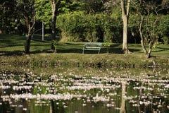 Πάρκο Wachirabenchathat Στοκ φωτογραφίες με δικαίωμα ελεύθερης χρήσης