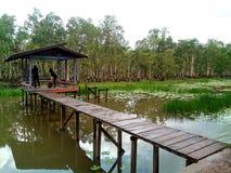 Πάρκο Wasur στοκ εικόνα