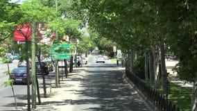 Πάροδος οδήγησης και πόλεων δέντρων φιλμ μικρού μήκους