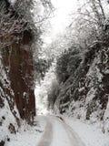 Πάροδος Snowscape Στοκ Εικόνες