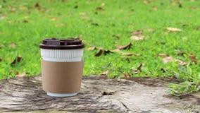 Πάρτε μαζί το φλυτζάνι καφέ ή το μίας χρήσης φλυτζάνι στο ξύλο στο πράσινο φυσικό υπόβαθρο χλόης στον κήπο με το πρωί ηλιοφάνειας φιλμ μικρού μήκους