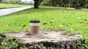 Πάρτε μαζί το φλυτζάνι καφέ ή το μίας χρήσης φλυτζάνι στο ξύλο στο πράσινο φυσικό υπόβαθρο χλόης και δέντρων στον κήπο με το πρωί φιλμ μικρού μήκους