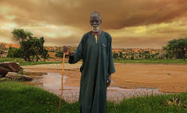 Πάστορας dogon Στοκ Φωτογραφίες