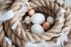 Πάσχα, αυγά, αυγά κοτόπουλου, αυγά ορτυκιών, αυγά, σχοινί, φωλιά, λευκό, φτερά Στοκ φωτογραφία με δικαίωμα ελεύθερης χρήσης