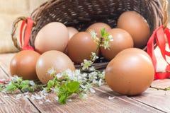 Πάσχα - λεπτομέρεια στα αυγά κοτών σε ένα ψάθινο καλάθι με Ri Στοκ εικόνα με δικαίωμα ελεύθερης χρήσης