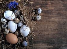 Πάσχα ευτυχές Αυγά Πάσχας και διακόσμηση Πάσχας στον ξύλινο πίνακα Στοκ Εικόνα