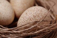 Πάσχα ευτυχές Υπόβαθρο με τα φυσικά αυγά στη φωλιά Στοκ Φωτογραφίες