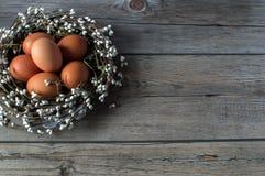 Πάσχα ευτυχές Χρωματισμένα αυγά στην όμορφη φωλιά Στοκ Εικόνα
