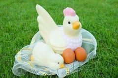 Πάσχα, κοτόπουλο πολλά αυγά στη χλόη Στοκ εικόνα με δικαίωμα ελεύθερης χρήσης