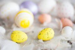 Πάσχα, χρωματισμένα αυγά, κίτρινο, άσπρο, άσπρο δέντρο, άσπρο υπόβαθρο, feathersa, αυγά κοτόπουλου, αυγά ορτυκιών, Στοκ Εικόνες