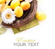 Αυγά Πάσχας και λουλούδια ανοίξεων Στοκ Εικόνα