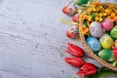 Πάσχα, χρωματισμένα αυγά Πάσχας που τίθενται σε μια διακόσμηση Πάσχας κύπελλων πίσω από ένα άσπρο υπόβαθρο Στοκ Εικόνες