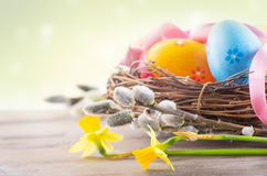 Πάσχα Όμορφα ζωηρόχρωμα αυγά στη φωλιά με τα λουλούδια άνοιξη στοκ φωτογραφία με δικαίωμα ελεύθερης χρήσης