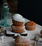 Πάσχα cupcakes με την κονιοποιημένη ζάχαρη Στοκ Εικόνα