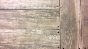Πάτωμα από ένα δέντρο Στοκ εικόνες με δικαίωμα ελεύθερης χρήσης
