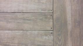 Πάτωμα από ένα δέντρο Στοκ Εικόνα