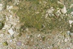 Πάτωμα κατασκευής με τη μικρή συγκεκριμένη πέτρα Στοκ Εικόνες