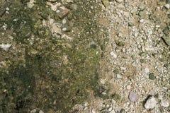 Πάτωμα κατασκευής με τη μικρή συγκεκριμένη πέτρα Στοκ εικόνες με δικαίωμα ελεύθερης χρήσης