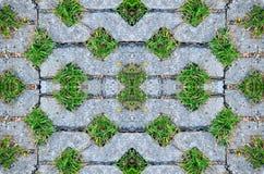 Πάτωμα τούβλων με τη χλόη Στοκ Φωτογραφίες