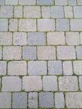 Πάτωμα φραγμών τσιμέντου με τη χλόη μέσα - μεταξύ Στοκ Εικόνες