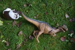 Πάλη αρπακτικών πτηνών τεράτων δεινοσαύρων παιχνιδιών με το χοίρο της Νέας Γουϊνέας στην πράσινη χλόη Στοκ Εικόνες