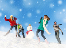 Πάλη χιονιού ομάδας ανθρώπων Στοκ φωτογραφία με δικαίωμα ελεύθερης χρήσης